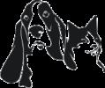 Логотип Ветеринарного Центра «Новокосино»